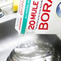 Borax Cleaning And Household Tips